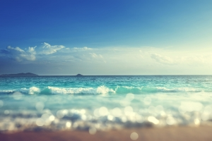 Sunny Summer Styles