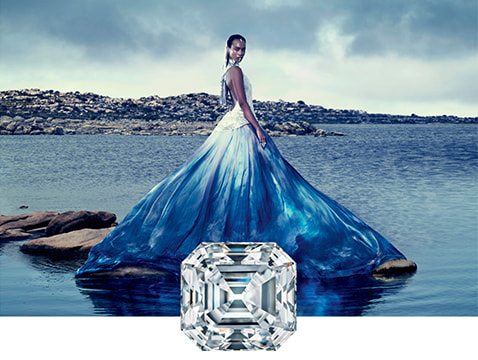 FM Exceptional Diamond