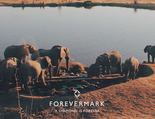 De Beers Forevermark elephants